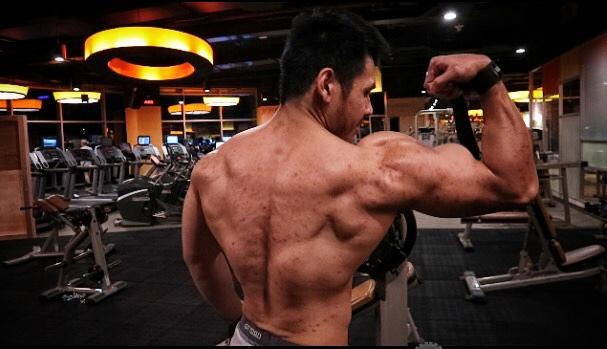 Build Muscle Program
